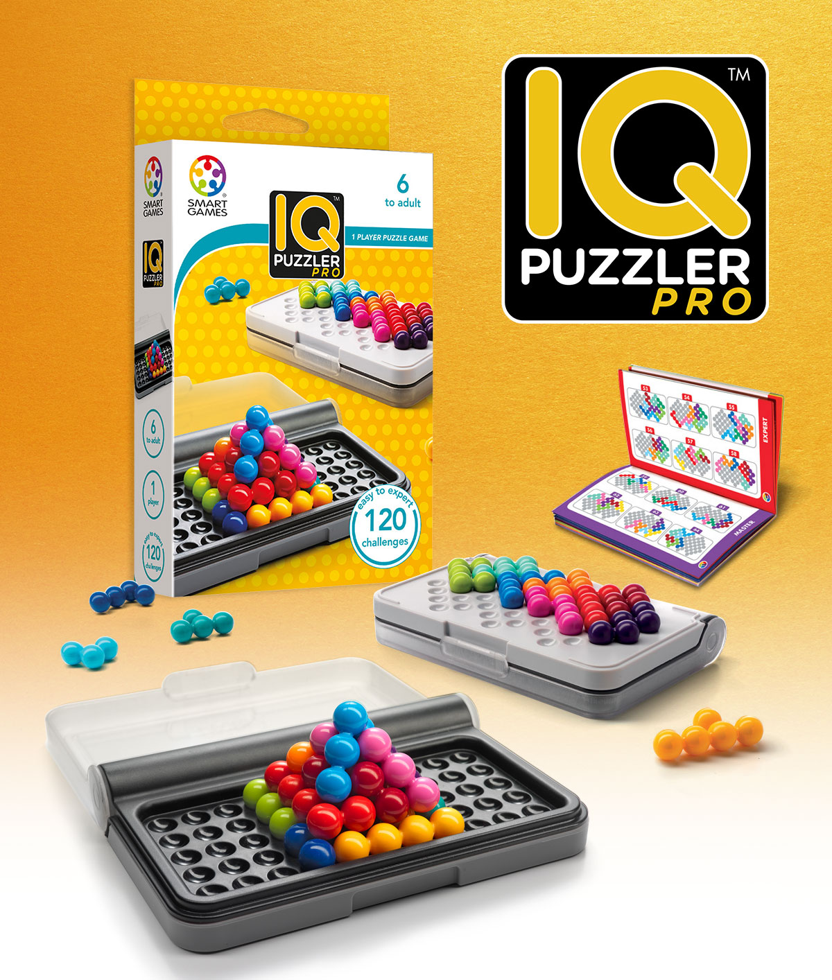 Smart games iq puzzler booklet pdf