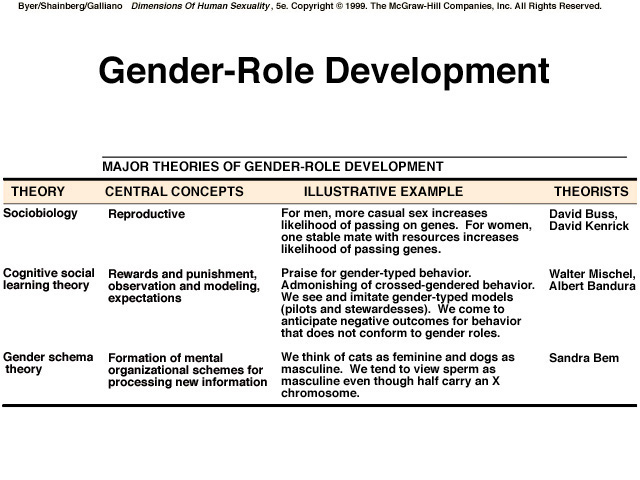 Three theories of gender development pdf