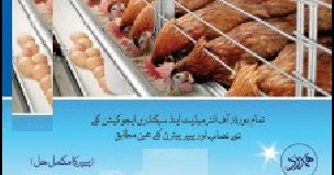 Pig farming guide in hindi pdf